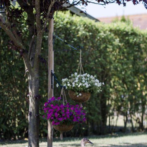 Besuch im Garten